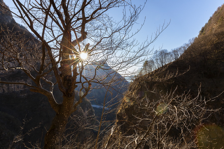 Panorama dall'alto verso il fondo della val Salet
