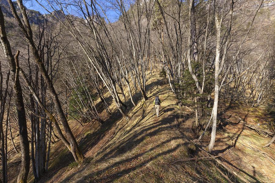 Superato il Col de La Stua il sentiero prosegue