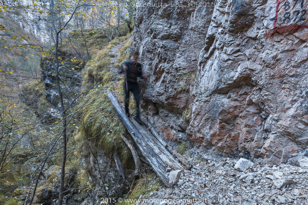Ponte di tronchi sulla val del Colàz - Monti del Sole