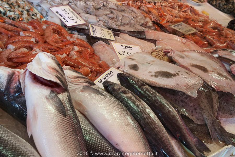 Chioggia - Prodotti ittici esposti al mercato del pesce al minuto