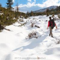 Sulla via verso la Palazza Alta | Dolomiti