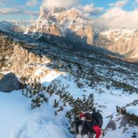 Quasi in vetta | Palazza Alta