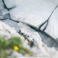 Lago del Coldai (Civetta) dettagli nel ghiaccio