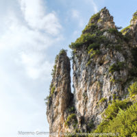 Fragili dettagli - sentiero Rù de Porta - Civetta - Dolomiti